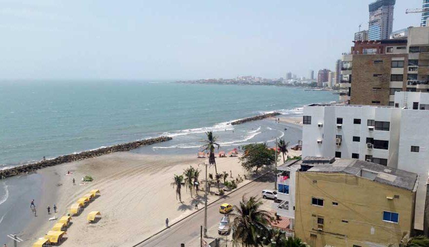 Palmetto Cartagena Venta 002
