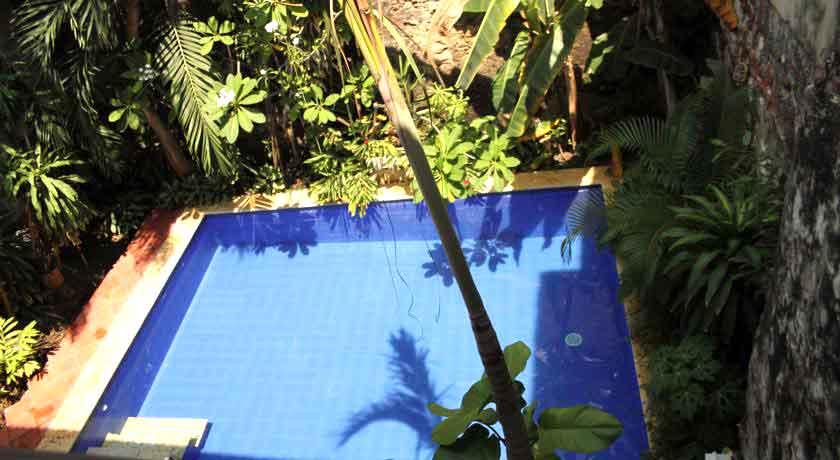 Vista Piscina Jardín