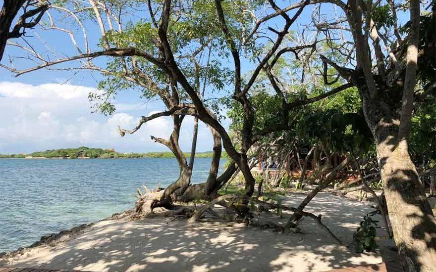 Isla Privada | Cholón 032