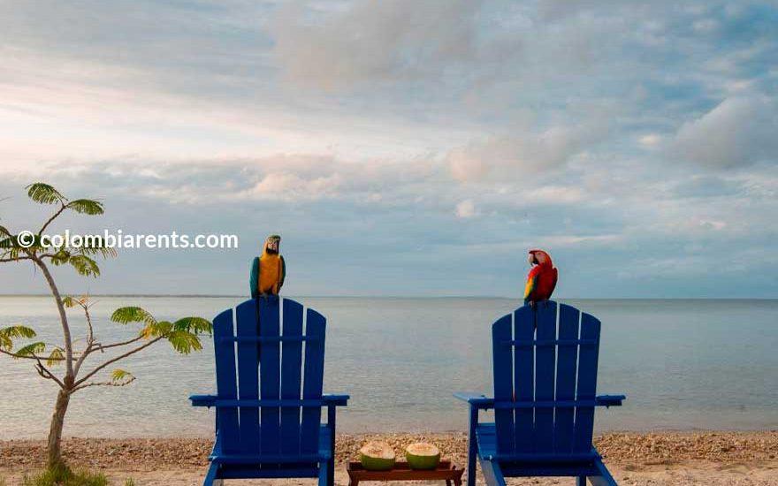 Casa en la playa de barú
